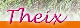 logotheixmorbihan3.jpg